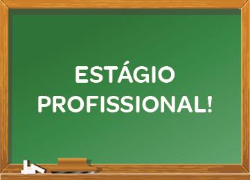 Técnico(a) da Área de Educação e Formação (Estágio Profissional)